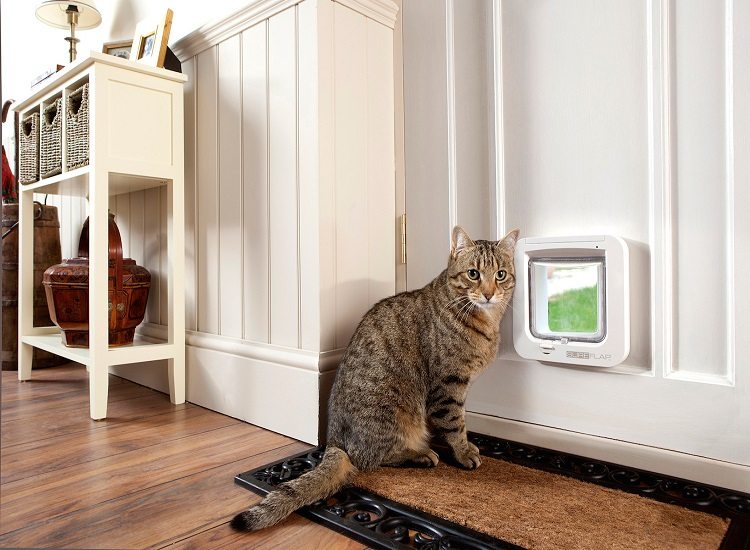 Garvin's Invisible Fence Brand By Petsafe And Garvin's Pet Doors